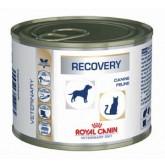 Recovery dog 8*100g