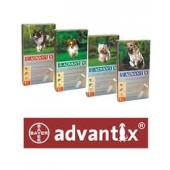 ADVANTIX caine